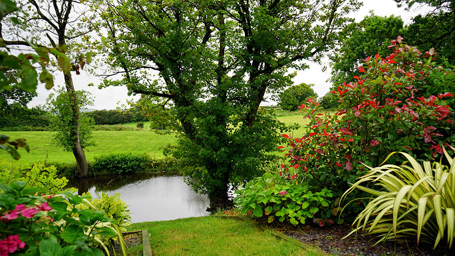 Beautiful garden in Birmingham pest control services required for mice